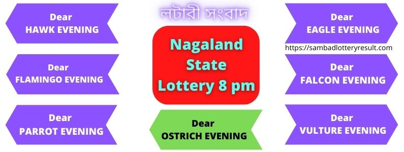 lottery sambad today result 8pm